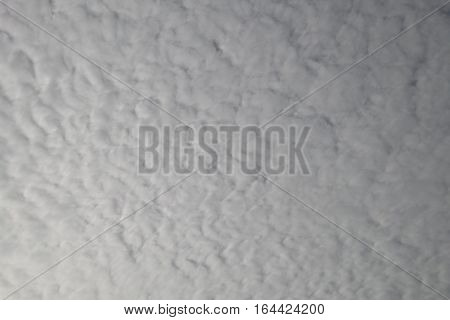 Altocumulus Cloud On Morning Background