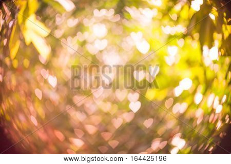 Abstract background heart shaped bokeh with natural blurred background.(Filter effect used)