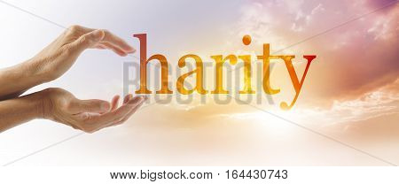 Charity Campaign Concept Banner - Female hands making the C of CHARITY against a beautiful peach colored sky with sun breaking through from behind clouds and copy space