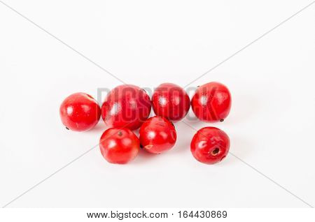 pink pepper is isolated on white background closeup