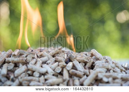 Heap of Pellets in flames in the nature