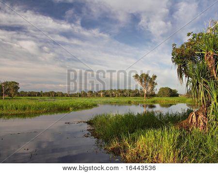 Yellow Waters Billabong - Kakadu