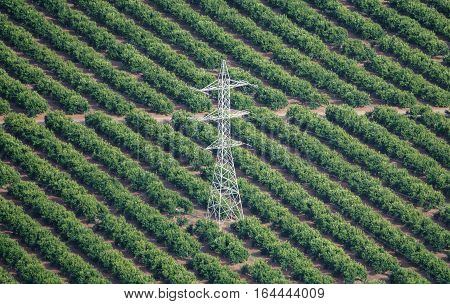 Long shot of Electric tower and orange fields