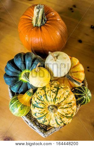 Pumpkin and Gourd displayed in a heart shape