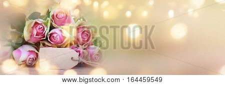 Abstract background panorama with rose for valentines day and mothers day