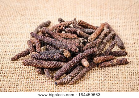 Long pepper or Piper longum on burlap sack background.