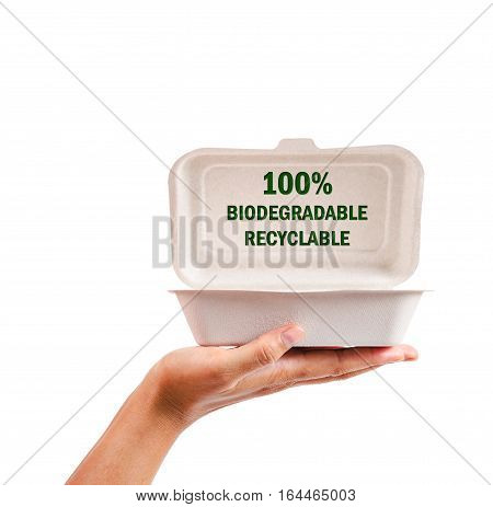 natural plant fiber food box in hand isolated on white background Saved clipping path.