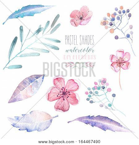 Set with isolated watercolor floral elements: tender flowers and leaves in pastel shades, hand drawn on a white background, for self-compilation of the bouquets and ornaments