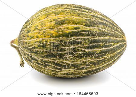 One Fresh whole Piel de sapo melon on white background. Selective focus.
