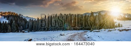 Panorama Of Snowy Road Through Spruce Forest In Mountains At Sunset