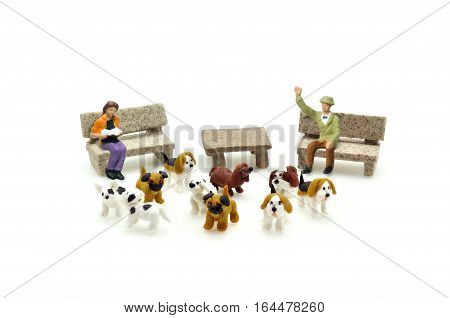 Selective focus miniature puppy dogs and people relax on bench conceptual. Shih-Tzu Pug beagle dalmatian french bulldog puppies.