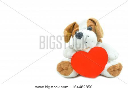 Cute beagle puppy doll showing red heart on white background.