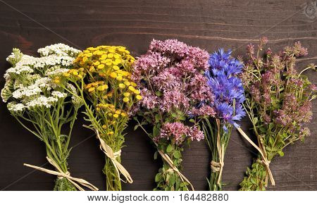 Different types of fresh herbs on a wooden table.