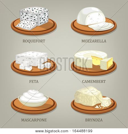 Set of isolated icons of french and italian, polish and greek, ukrainian and romanian cheese. Roquefort and mozzarella, feta and camembert, mascarpone and bryndza. Appetizer and nutrition theme