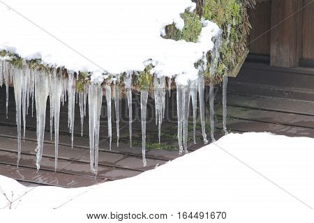snow and Snowy ice Icicles hanging on a roof house at Shirakawa-go in Japan in the winter  japanese village Shirakawago located in Gifu Prefecture. Traditional village Japan's UNESCO World Heritage