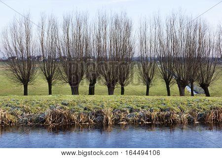 Frozen water in a winter polder landscape in the Netherlands
