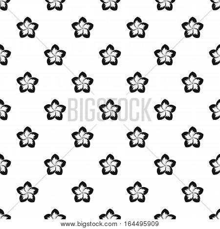Frangipani flower pattern. Simple illustration of frangipani flower vector pattern for web