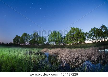 starry night the stars over the lake green grass trees illuminated by a flashlight fisheye photo morning comes
