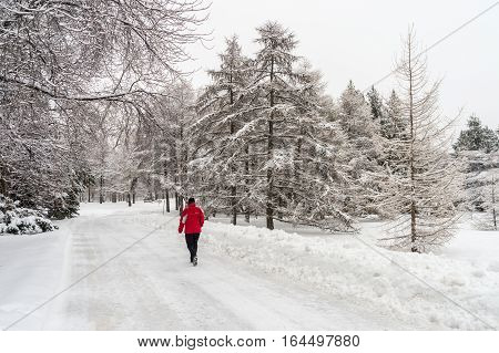 Montreal CA - 4 January 2017: Winter snowy landscape in Montreal Quebec (Botanical Garden)