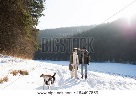 Beautiful senior woman and man on a walk with their dog in sunny winter nature.
