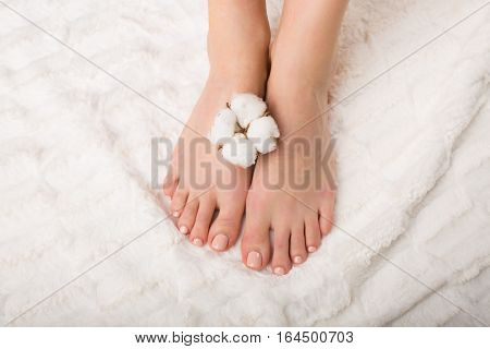 Woman Holding A Cotton Flower