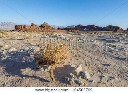 View on the valley of geological Timna park and dry riverbed. It is located 25 km north of Eilat (Israel), combines beautiful scenery with unique geology, variety of sport and family activities