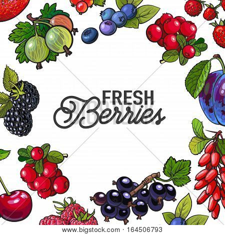 Square frame of garden berries with round place for text inside, sketch style illustration isolated on white background. Blueberry, current, cherry, plum frame, banner, poster, leaflet design