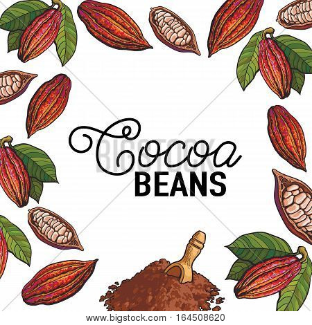 Square banner, poster template with frame of cacao fruits and place for text, sketch illustration isolated on white background. Cacao fruit, beans and powder forming a frame template for chocolate