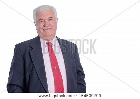 Smiling Mature Businessman In Suit