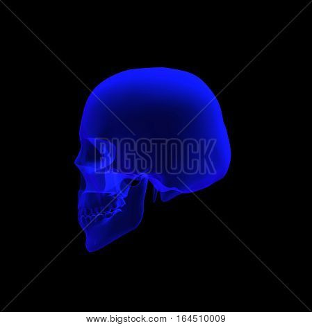 human skull  3d illustrated rendering in x ray in left view