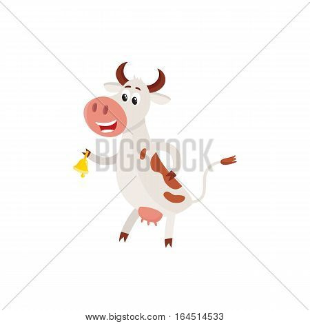 Funny black white spotted cow standing on hind legs and ringing a bell, cartoon vector illustration isolated on white background. Funny cow ringing a bell sanding on two legs, dairy farm concept