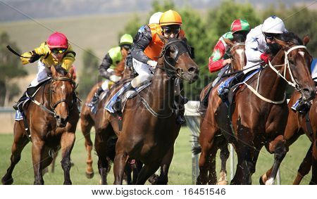 MELBOURNE - FEBRUARY 21: Horses enter the straight in the De Bortoli Plate, won by On the Scoot at Yarra Glen on February 21, 2010 near Melbourne, Australia.