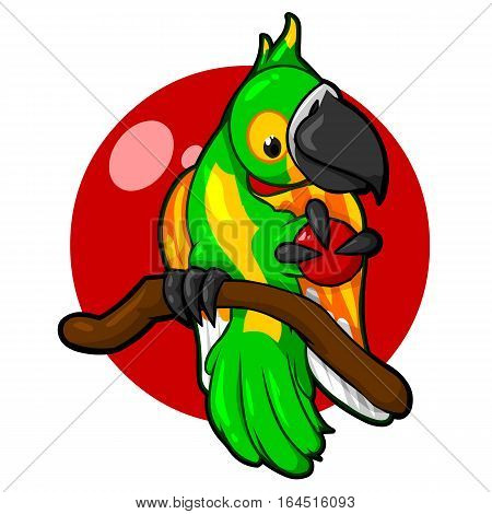 Green Parrot with a red background bird tropics nature