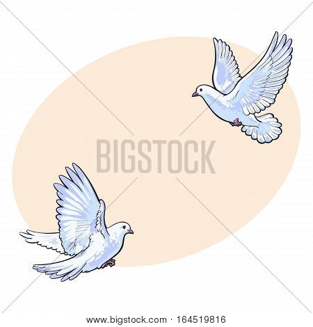 Two free flying white doves, sketch vector illustration isolated on background with place for text. Realistic hand drawn couple of white doves, pigeons flapping wings, symbol of love and romance, marriage icon