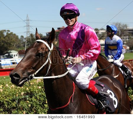 MELBOURNE - 13 de março: Craig Williams no Boom ' Zoom após a Roy qualidade de Higgins, vencido por Elmore em n