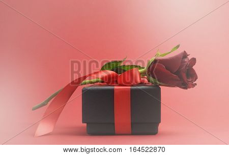 Happy Valentines Day Gift And Rose