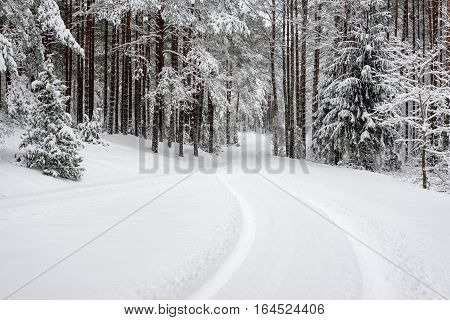 Car Tire Tracks On Winter Road
