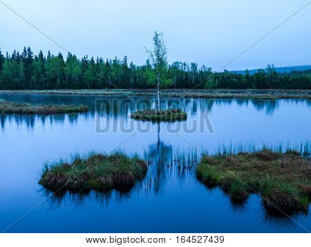 Evening time at Chalupska Moor Lake near Borova Lada, Sumava Mountains, Czech Republic, Europe. Small islands with trees in the middle of peat-bog.