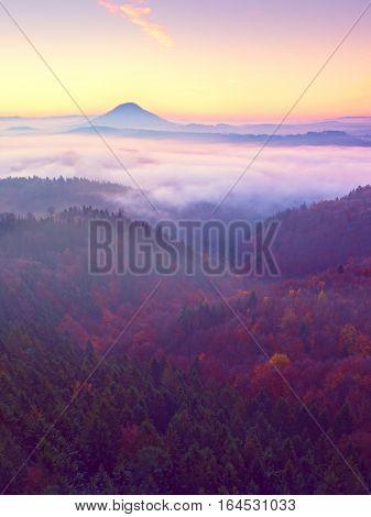 Pink Daybreak In Hilly Landscape. Early Winter Misty Morning In Land