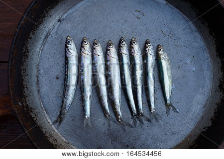 Fresh anchovy on a dark iron pan, background