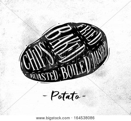Poster potato cutting scheme lettering chips baked fried roasted boiled in vintage style drawing on dirty paper background