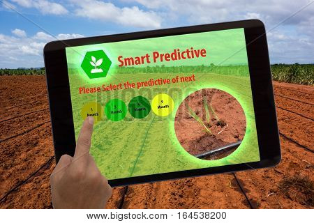 Internet of things agriculture conceptaugmented realityfarmer use tablet and ar application to predictive the estimate of field in next 1369 mounth