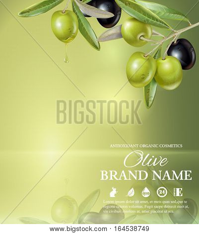 Vector colrful banner with olive branch on green smooth background with reflection. Design for olive oil, natural cosmetics, health care products. With place for text and your product image