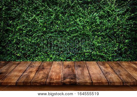 Empty old wooden table or counter with green leaves background. For display or montage your products.