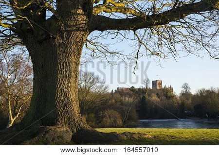 The historic St. Albans Cathedral viewed from Verulamium Park in St. Albans England.