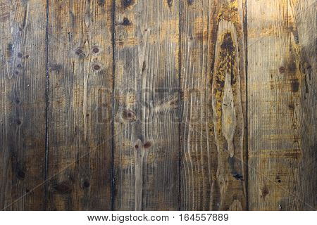 Brown wooden background. Abstract wood texture empty template