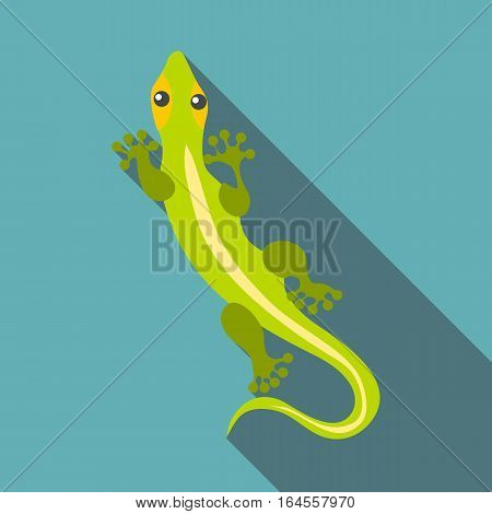 Little clever lizard icon. Flat illustration of little clever lizard vector icon for web