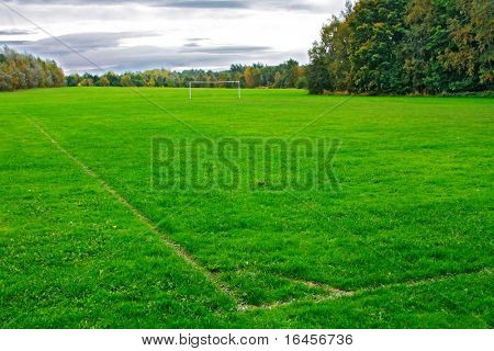 Soccer beautiful green field