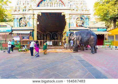 Madurai Meenakshi Amman Temple Gateway Elephant