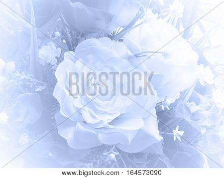 Rose In Soft Style